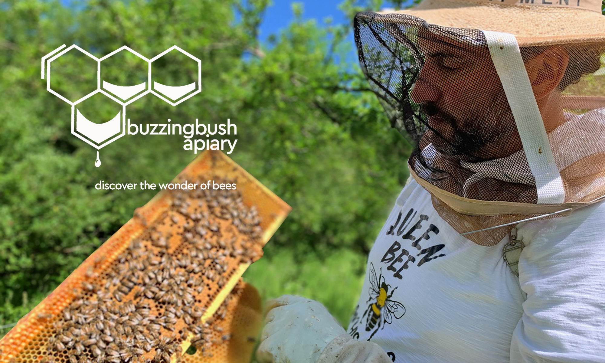 buzzing bush apiary